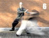 Taijiquan studies: Dalu compared to Shindo Yoshin Ryu